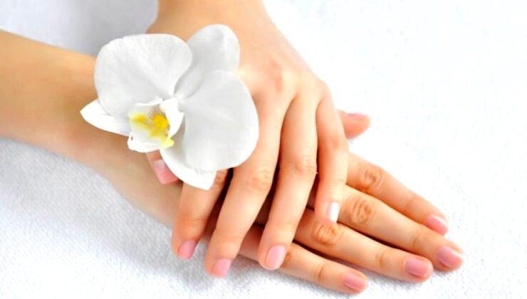 Karantinada yıpranan ellerimiz için bitkisel bakım