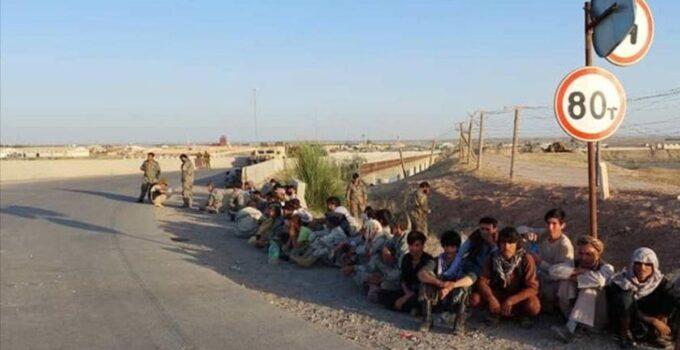 'Afganistan göçü yeni değil' diyen Göç Araştırma Merkezi başkanından uyarı: Medyanın popülerliğine aldanmayın