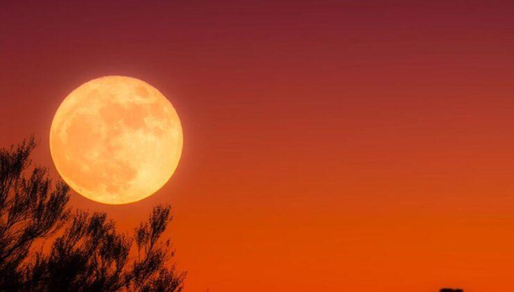 Geri sayım sürüyor, sadece 4 gün kaldı! Yaşanacakları Astrolog Aysun Koç tek tek anlattı