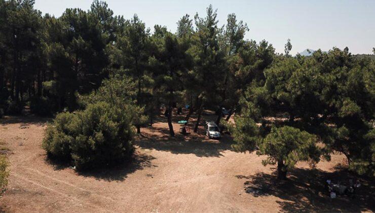 İzmir'de 1 Haziran-30 Ekim tarihleri arasında ormanlara girmek yasaklandı