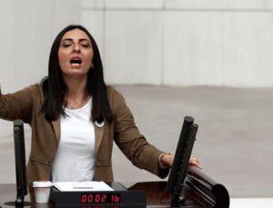 Meclis'te vekilleri şaşırtan müzik yasağı protestosu! CHP'li vekil türkü söyledi