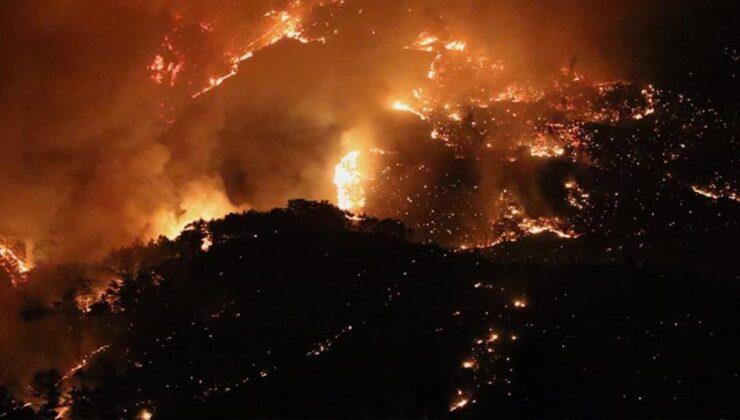 Mersin'de 2 gündür devam eden yangın kontrol altına alındı! Olayla ilgili 4 kişi gözaltında