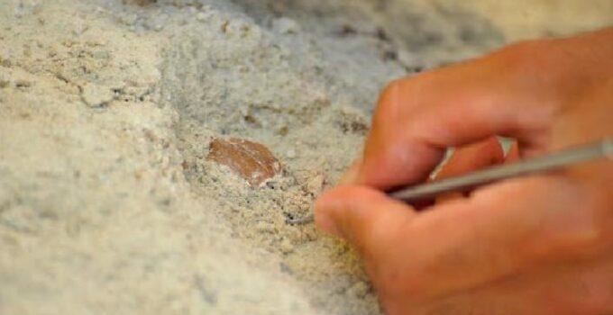 Toprak kayması sonucu gün yüzüne çıkan mağarayı çoban fark etti! İçinde milattan önce yapılmış tatlı bulundu