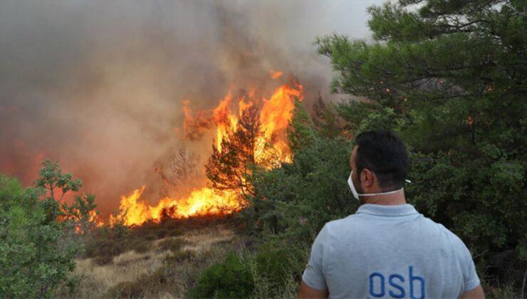 47 ilde 209 orman yangını kontrol altına alındı, 5 ilde 13 noktada söndürme çalışmaları sürüyor