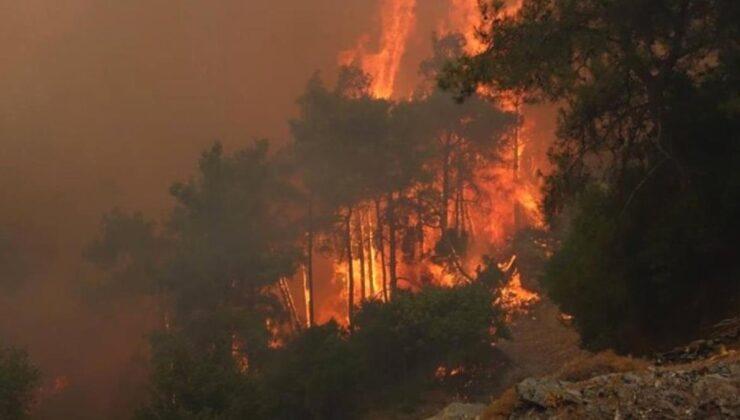 Son Dakika: 217 yangın kontrol altına alındı, 2 ildeki 6 noktada alevlerle mücadele devam ediyor