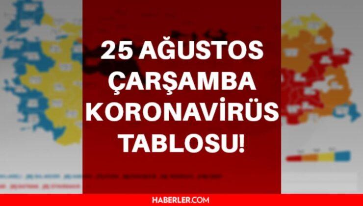 Son dakika… 25 Ağustos Koronavirüs tablosu vaka sayısı açıklandı! Korona virüs vefat sayısı ve vaka sayısı kaç? Türkiye korona ölü sayısı kaç oldu?