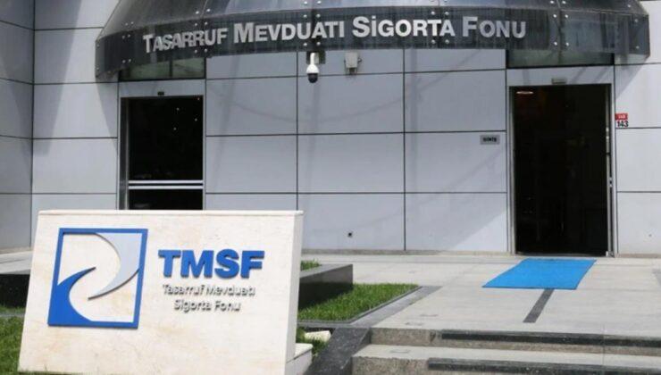 TMSF, Aynes Gıda'yı satışa çıkardı